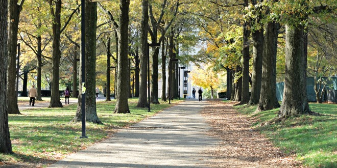 fall college campus